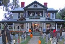 Halloween Decor / Halloween decor from Oya Costumes, for the perfect spooky party!