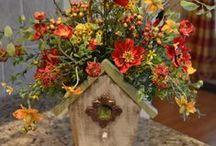 mélancolie d'automne / photos aux belles couleurs d'automne.