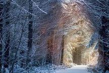 hivernal / photos de paysages enneigés