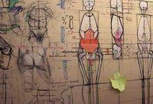 anatomia_0_s