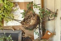 Le printemps et Pâques !(spring) / Images représentant tout ce qui symbolise Pâques,et le printemps  Oeufs , lapins, poules , coqs, fleurs  ,décos, dans des coloris doux et ravissants !