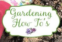 Gardening How-To's / Gardening How-To, Tips and Tricks for a successful garden and landscape.
