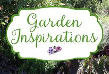 Garden Inspirations / Garden Inspirations, photos and ideas to turn your own garden into a thing of beauty.