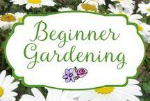 Beginner Gardening / Beginner gardening tips, tricks and info to help the newbie gardener get growing.