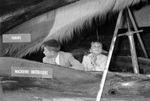 1955: The traveling whale / Up close and personal with the king of the deep