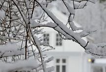 Winter garden / Talvipuutarha / Who said you can't  enjoy outside the Winter Garden? Not us! Winter Garden can be so amazing beautiful!