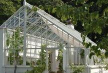 White greenhouses/ Valkoisia kasvihuoneita / May be some day...
