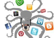 Omarm de octopus / Boek Social Media voor de finaciële dienstverlener uitgave van Kluwer. Auteurs: Jan Schrijver, William Diebels, Martine van den Berg e.a. http://shop.kluwer.nl/financieel-fiscaal/financiele-dienstverlening/omarm-de-octopus/prod10298015.html#.UPP_UXXEPZF.facebook