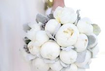 W H I T E   bouquets / by Carrollwood Florist
