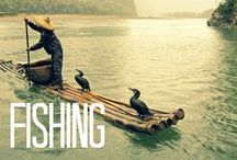 Fishing / A collection unique fishing techniques from around the world.