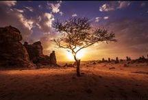 Landscape Photography / Landscape Photography