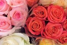 ♥ Flowers / Flores ♥