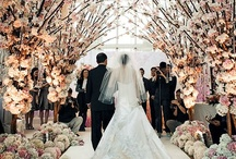 Wedding Dazze / by Asha Mars