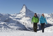 Winter Activities / On this board, you can see the various Winter activities you can do in Zermatt.