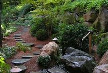 Paths - Dry rivers / by Baldi Gardens, Inc.