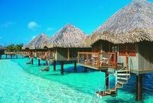 Love Fiji