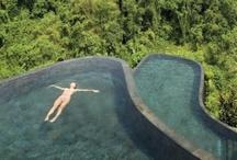 Love Swimming Pools