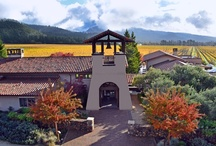 Views from St. Francis / Take a moment to visit the Winery through the lens of our Canon EOS.  / by St. Francis Winery