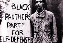 Black Panther / by Masato Nakanishi
