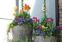 Beautiful garden and patio ideas