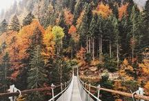 Autumn Inspiration / All things autumn: falling leafs, magical and cozy places, style...