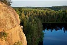 Finnish Natural / Finland / by Susan M