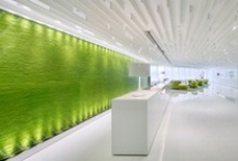Medical Center Interior