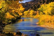 Albuquerque inspiration / by Laura Drangmeister