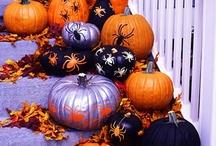 Fall <3 / by Elizabeth Suzanne