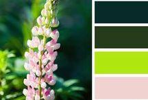 Colors, colours and couleurs...