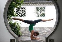 Yoga / by Laura Drangmeister