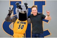 """Peter the Anteater / Meet Peter the Anteater, celebrity mascot of UC Irvine. Inspired by Johnny Hart's """"B.C."""" comic strip, Peter the Anteater remains, if not the most unusual college mascot, at least the one with the longest tongue. Zot!"""