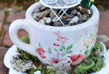 Miniature Gardens / by Sonya Gwinn