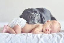 Cuteness / Babies and puppies galore / by Emily Zwerner