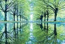 Perfect Reflection / by Kathy M. Storrie/writer/author/pinner