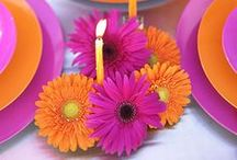 #ORANGE ↔ #PURPLE /  ~ love sharing ~ TY you for repinning & following ♥ / by Emmy DE