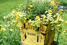 Garden Junk! / by eclectic cottage