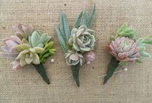 Succulent Wedding Ideas / Succulents are a beautiful way to bring natural elements into the look and feel of your special day. Mix it with classic decor to add a touch of modern or incorporate it into an outdoor style to create a rustic vibe  #succulents #plants #rustic #outdoorwedding #modern #natural #earthy #tipis #teepees #tipiwedding #teepeewedding #midlands #tipihire #derbyshire #peaktipis