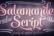 Salamander Script Typeface