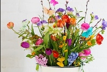 Beautiful Flowers & Bouquets / They make me happy :)