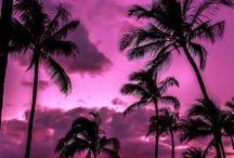 Beautiful Sunrise & Sunset