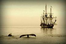 Ship Ahoy!!
