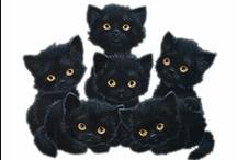 Black Cats...Art & Objects / by Doris Amey-Ketcham