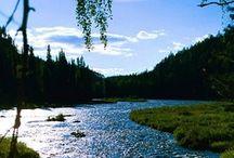 Ruka-Kuusamo / Ruka-Kuusamo ist da, wo Lappland anfängt. Jeder Besuch in Ruka-Kuusamo ist auf's Neue ein erstaunliches Abenteuer. Die Besonderheiten der einzelnen Jahreszeiten sorgen für einzigartige Erfahrungen.
