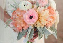 Wedding ❊ / ❊