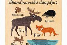 ANIMALS, fish + birds / Domesticated + Wildlife / by Dorte Eam