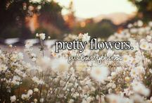 Just girly things ❊ / ❊ Being a girl is certanly not always easy. We're so weird.