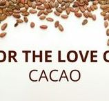 FOR THE LOVE OF CACAO / Fact and tips about cacao