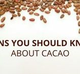 Things You SHOULD KNOW about Chocolate / Fun things about chocolate