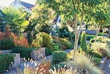 Houses - landscape, gardens, patio